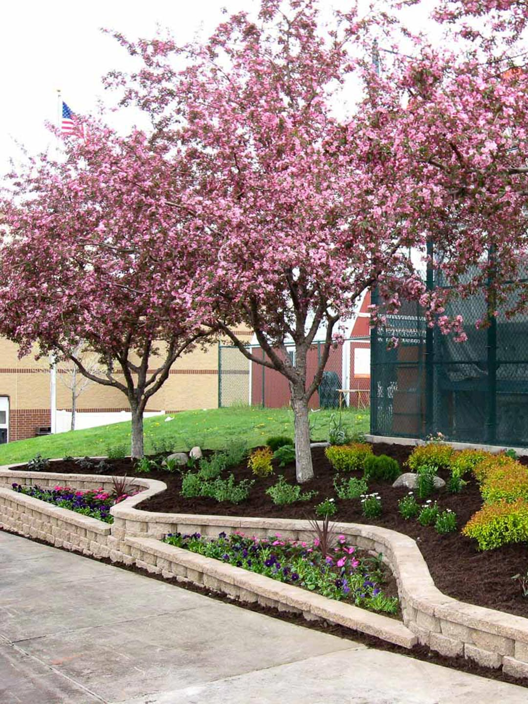 Commercial landscaping by Greenside Inc